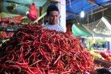 Kenaikan harga cabai picu inflasi di Kepri