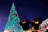 Madrid habiskan anggaran terangi jalan dan alun-alun dengan lampu Natal