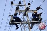 PLN lakukan pemeliharaan jaringan listrik