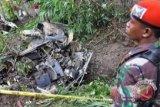 Pesawat akrobatik Bravo 202 jatuh saat bermanuver