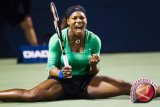 Serena William hadapi Karolina Pliskova pada perempat final Grand Slam AS