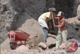 Anak-anak berisiko jadi buruh  karena tingginya  permintaan  hand sanitizer