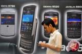 Penjualan Blackberry Runtuh