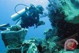 Warga Jepang selamat dalam musibah selam