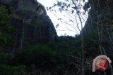 Jalur Gunung Api Purba ditutup, akibat serangan lebah