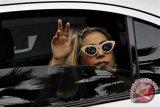 Bradley Cooper jatuh cinta dengan wajah Lady Gaga
