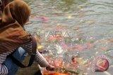 Dinas Perikanan OKU tebar  9.000 benih ikan