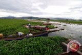 Pemerintah Minahasa ikutsertakan warga dalam pembersihan Danau Tondano