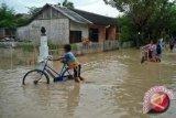 Ratusan rumah di Lebak terendam banjir