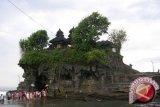 Lonjakan Turis China Ke Bali Signifikan