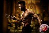 Hugh Jackman Terjun Ke Laut Tiap Pagi Demi Wolverine