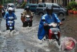 Four Dead Due to Electrocution During Flood in Semarang