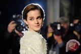 JK Rowling: Hermione Seharusnya Menikahi Harry Potter