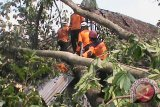 Angin kencang terjang Gunung Kidul, puluhan rumah rusak