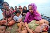 Selamatkan Pengungsi Rohingya, Jokowi-JK Dinilai Layak Dapatkan Nobel Perdamaian