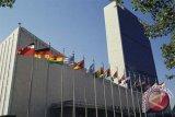 Pejabat PBB: keragaman hayati menghilang dengan cepat