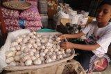 Pemprov Sulteng tekan lonjakan harga bawang putih di Palu