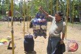 Perkutut milik Prabukusumo juara Giripeni Cup