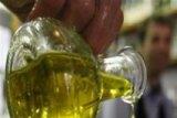 Aroma Zaitun Sebabkan Kenyang