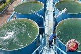 Air baku di kota Tangerang tercemar limbah