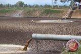 Astaga! Limbah Pabrik Sawit PT BUM Diduga Cemari Lingkungan