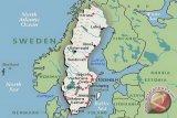 Sebuah kota di Swedia gunakan kotoran ayam untuk hentikan penyebaran corona