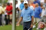 Pegolf Tiger Woods akan tampil di Turki Terbuka