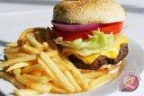 Kenapa Makan Burger Dapat Membuat Depresi?