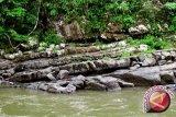 Gunung Kidul-Wonogiri-Pacitan sepakati pengelolaan Geopark Gunungsewu