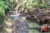 Bantul teliti kandungan air sungai tercemar limbah