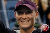 Australia Kembali Ke Grup Dunia Piala Davis