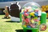 Android Jelly Bean 4.1 Paling Banyak Dicari Di Indocomtech