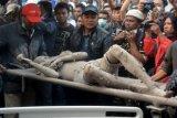 14 Tewas Korban Sinabung di RSU Kabanjahe