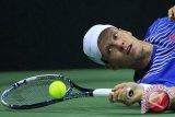 Berdych Akan Bermain Di Piala Davis Lawan Prancis