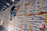 RNI: kebijakan gula pemerintah picu