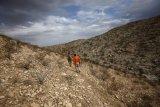 Pakai pemindai sinar-X, Mexico temukan 51 migran di dalam truk