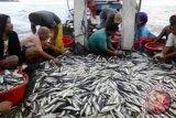 Dinas Kelautan dan Perikanan KP Biak bina 400 nelayan