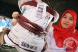 Petugas memperlihatkan darah saat donor darah massal di Lhokseumawe, Provinsi Aceh, Senin (23/2). Donor darah massal yang berhasil mengumpulkan 800 kantong darah dari 1000 kantong target itu serangkaian kegiatan dalam rangka memperingati Hari Ulang Tahun Palang Merah Indonesia (PMI) Cabang Aceh Utara ke-33 tahun. ANTARA FOTO/Rahmad/ss/nz/15