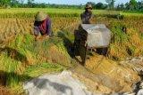 Kementan fokuskan mekanisasi pertanian ke seluruh wilayah Indonesia