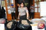Bakso Daging Celeng Di Temukan Polisi Sukabumi