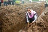 Bersatu Membantu Petani Tebu