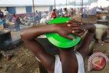Milisi Perkosa 127 Wanita Kongo