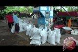 Yogyakarta segera operasionalkan rumah kompos baru