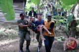 8.000 orang menderita gangguan jiwa di Riau