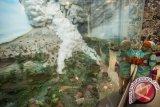 Standar normal baru diterapkan di Museum Gunungapi Merapi