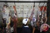 Sejumlah jagal memotong sapi di Rumah Potong Hewan (RPH) Kedurus, Surabaya, Jawa Timur, Rabu (1/7) dini hari. Menurut Ketua Paguyuban Pedagang Sapi dan Daging Sapi (PPSDS) Jatim Muthowif, karena kebutuhan sapi dan daging sapi di Jatim kurang selama bulan ramadan 2015 terpaksa mendatangkan sapi dari Lampung untuk dipotong di Jatim, karena di indikasikan banyak nya sapi betina produktif yang dipotong. Antara Jatim/M Risyal Hidayat/15