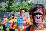 Sejumlah relawan yang tergabung dalam Centre for Orangutan Protection (COP) menggelar kampanye Orangutan bukan mainan di Surabaya, Jawa Timur, Selasa (7/7). Kampanye tersebut digelar untuk mengajak masyarakat Surabaya ikut serta dalam menghentikan eksploitasi Orangutan Sebagai sirkus dan properti foto. Antara Jatim/Andy Pinaria/zk/15.