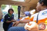 XL Berangkatkan 1000 Penjual Pulsa Pulang Kampung Gratis
