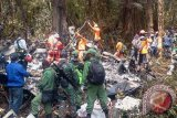 Tim SAR gabungan mencari korban kecelakaan pesawat Trigana di Kampung Oksob, Distrik Okbape, Kabupaten Pegunungan Bintang, Papua, Selasa (18/8). (ANTARA FOTO/STR)