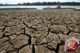 BMKG: 14 kecamatan di Sulawesi Utara kategori awas kekeringan